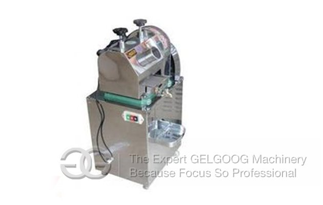 Vertical Electric Sugarcane Juice Machine