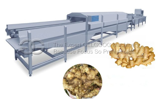 <b>Ginger Washing Line|Ginger Cleaning Line|Ginger Processing Line for Sale</b>