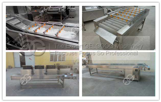 <b>Fruit Vegetable Cleaning Line|Strawberry Washing Machine|Cleaning Air Drying Line</b>