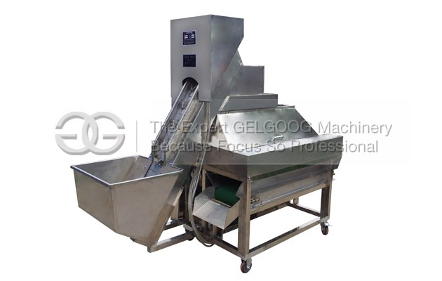 Onion Peeler Machine |Onion Skin Peeling Machine