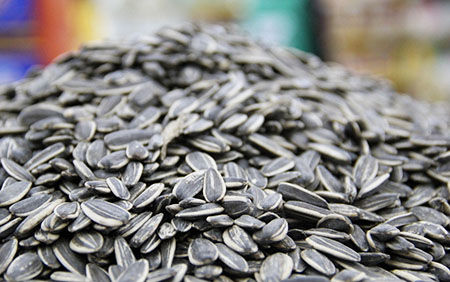 full automatic sunflower seeds production line with best price