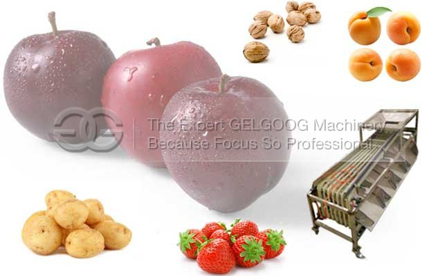 multifunction fruit sorting machine manufacturer