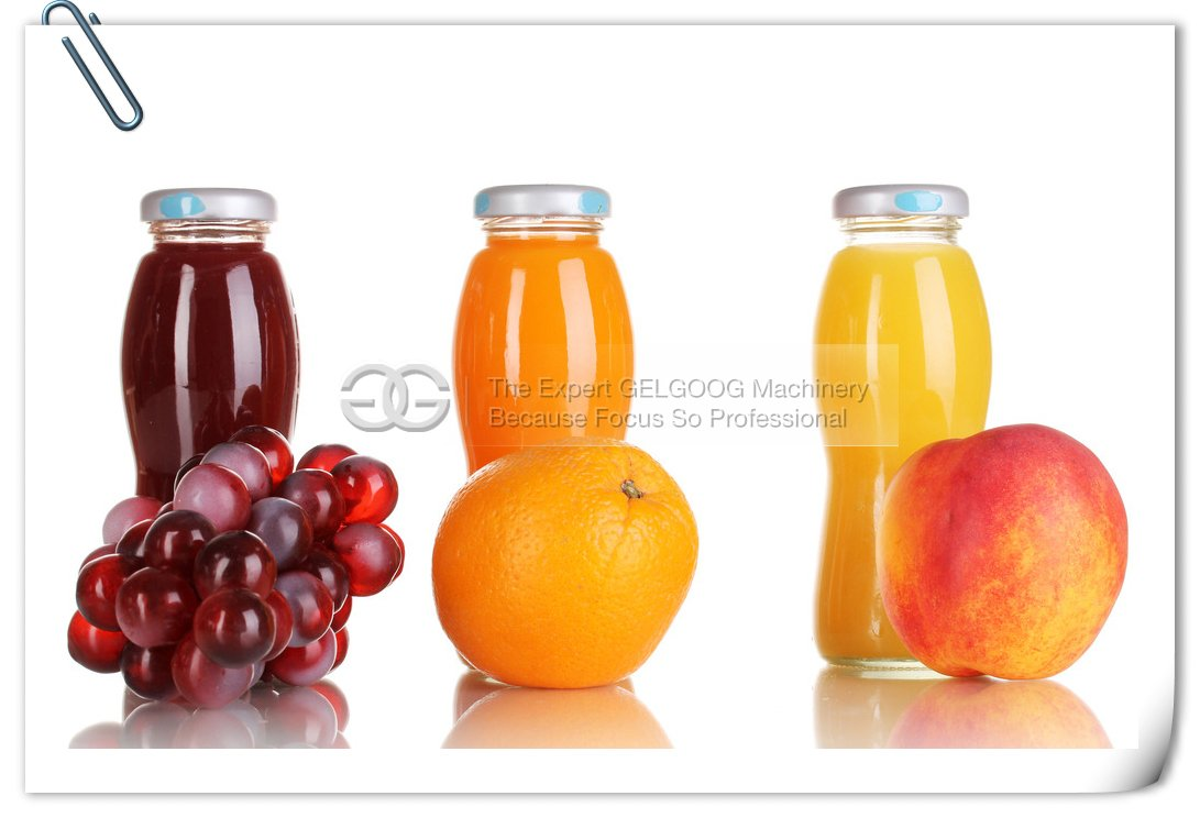 commercial fruit juice production line with low price