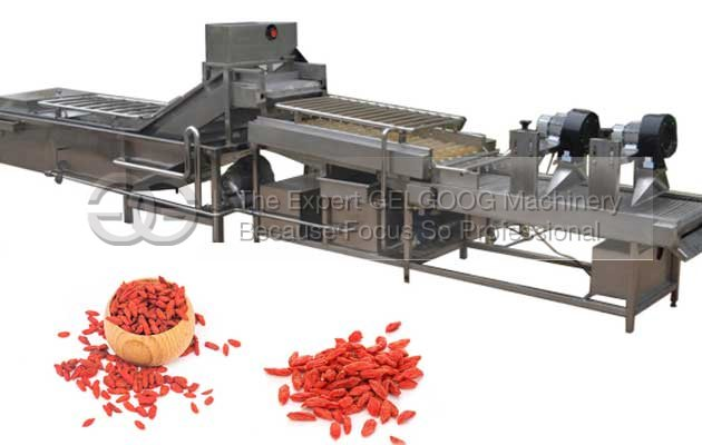 Automatic Dried Wolfberry Washing Machine|Wolfberry Cleaning and Drying Line