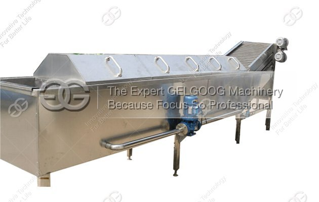 vegetable blanching machine|meat blanching machine