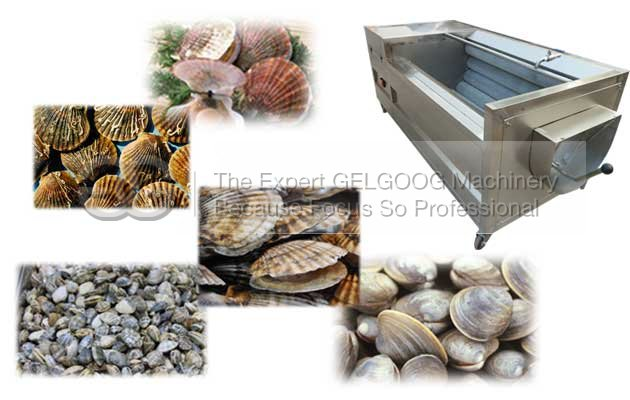 seafood washing machine for fresh oyster,clam,scallop