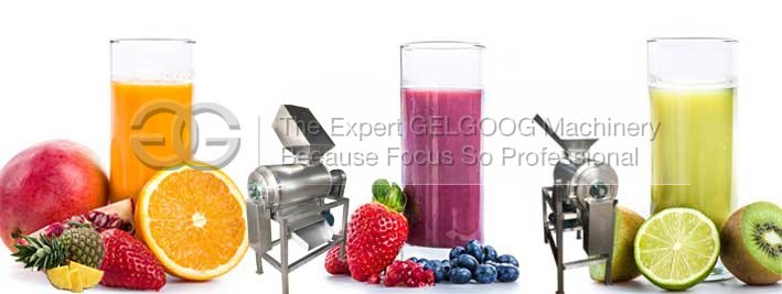 fruit vgeteable juice pulp machine manufacturer with low price