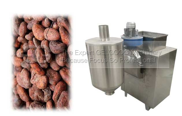 cocoa bean process machine|cocoa bean peeling machine with low price