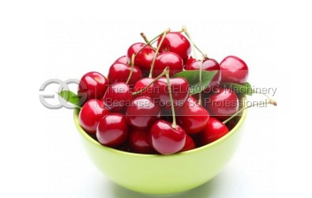 cherry seed removal machine