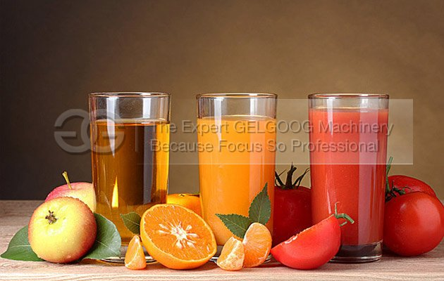 fruit juice extractor machine with high extracting rate