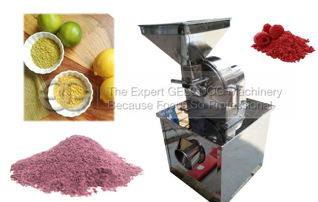 fruit vegetable powder making machine with best price
