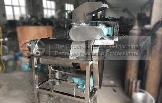 apple fruit juice extracting machine to  Burkina Faso