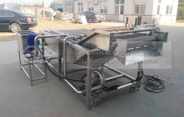 commerical vegetable washing and air drying machine with high quality