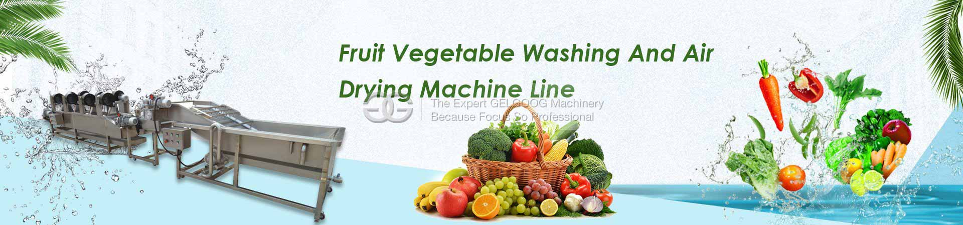 Fruit Vegetable Washing and Air Drying Machine