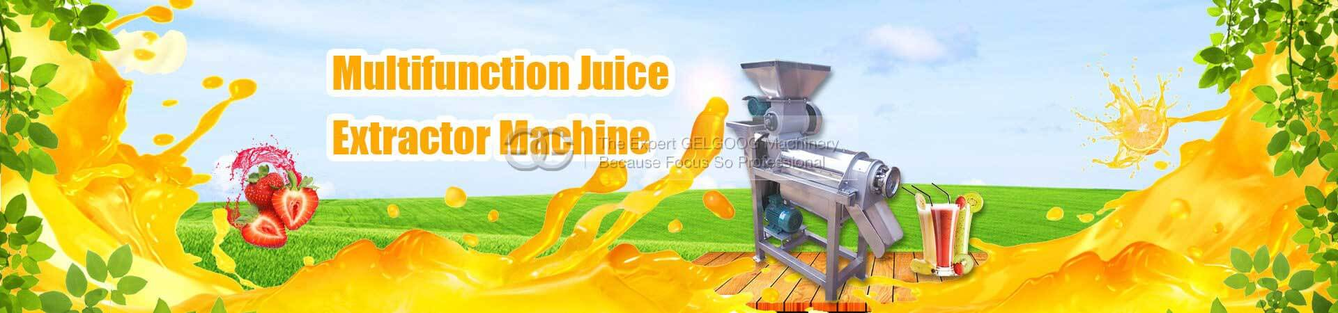 Fruit Vegetable Jucie Extractor Machine