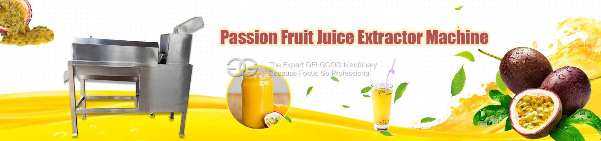 Passion Fruit Extractor Machine