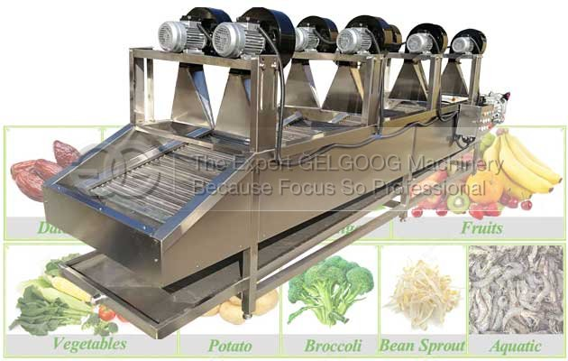 fruit vegetable air drying machine line with best price