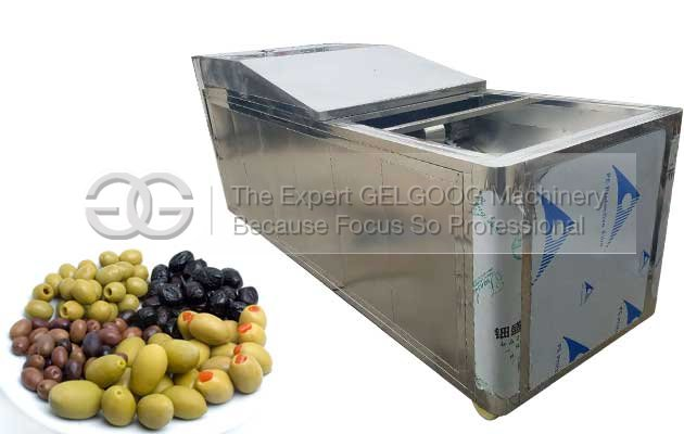 automatic olive pitting machine for sale