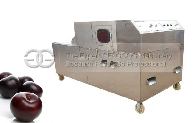 Black Plum Pitting Machine|Pl