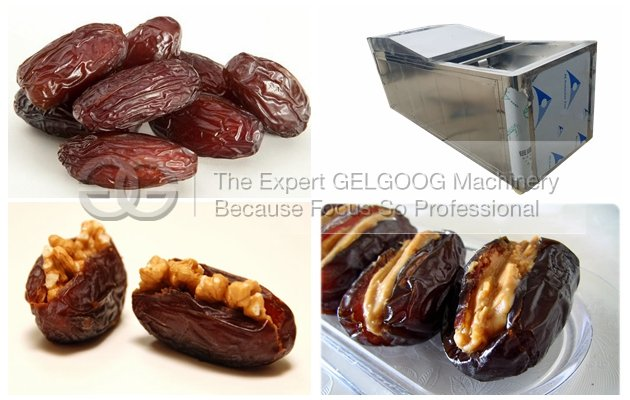 Saudi Arabia Iranian Dates Pitting Machine|Dates Seed Removing Machine