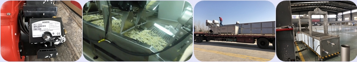 complete line of french fries production line with low price