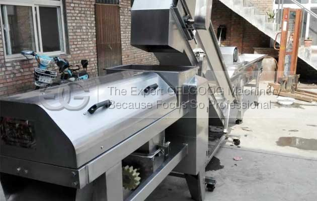grape setm removing and crushing machine