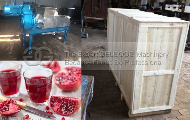 pomegranate juice extractor making machine malaysia with high quality