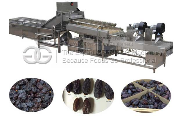 French Fries Production Line cost