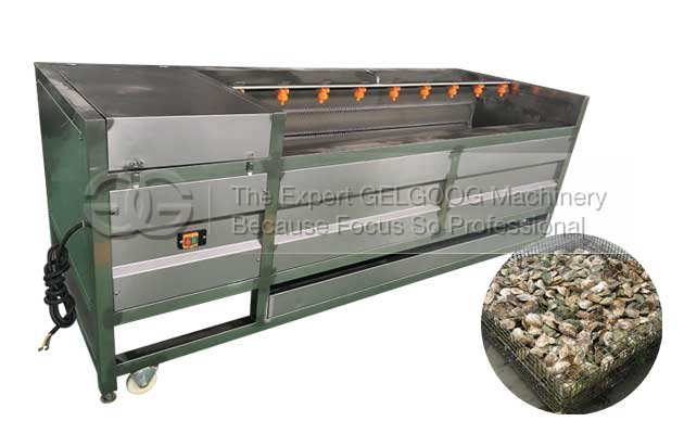 Seafood Oyster Washing And Cleaning Machine For Sale