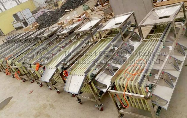 dates sorting machine for sale