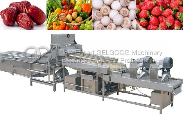 industrial fruit and vegetable washing machine for sale