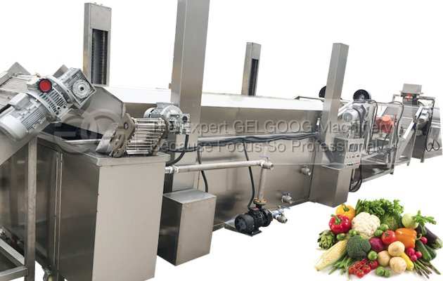 fruit vegetable washing and drying line