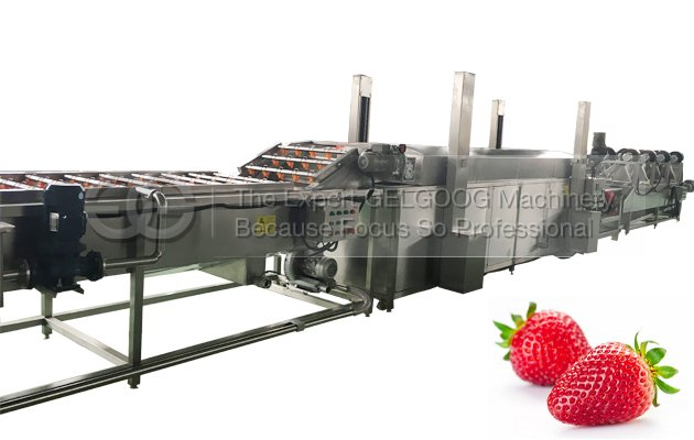 fruit washing and drying machine for sale manufatcurer