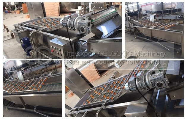 commercial fruit and vegetable washer machine line for sale