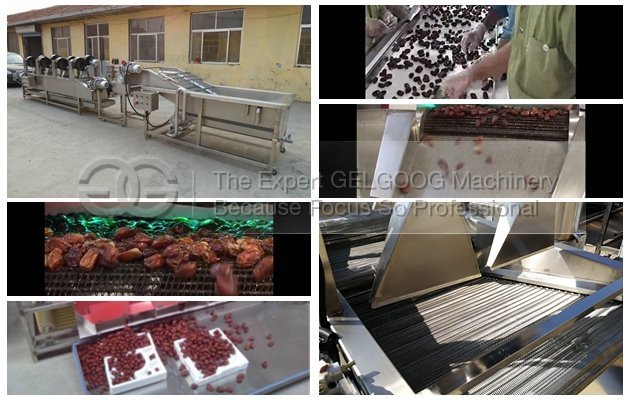 dates cleaning and drying machine for sales