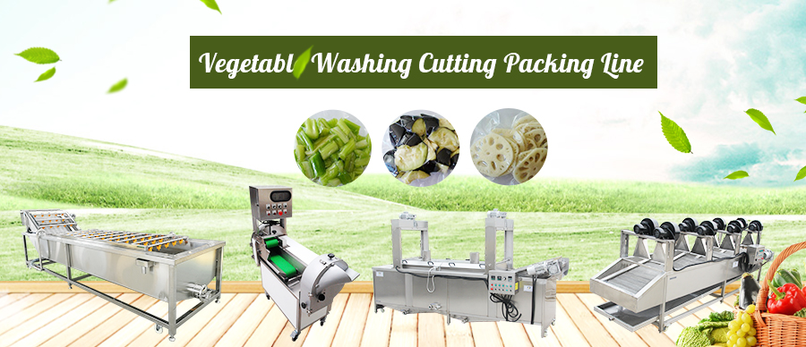Vegetable Washing Cutting Packi