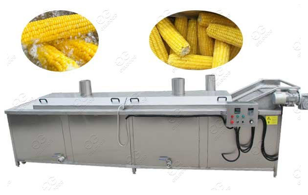 Sweet Corn Cob Blanching Machin