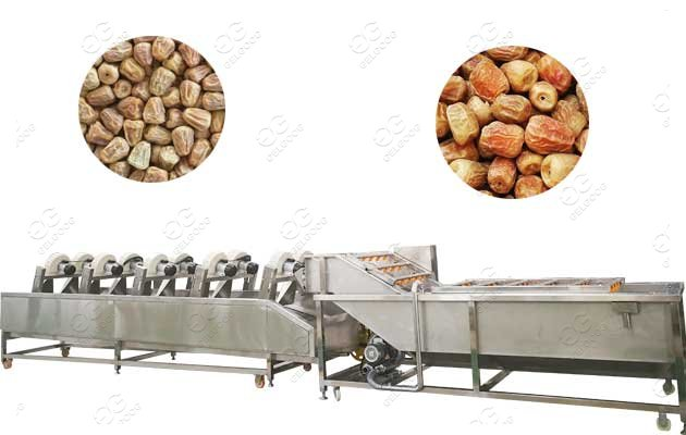 Date Washing Drying Machine Line|Date Palm Cleaner Line|Jujube Cleaning Line