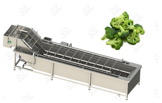 Customer-made Broccoli Florets Washing Machine Broccoli Florets Blanching Machine