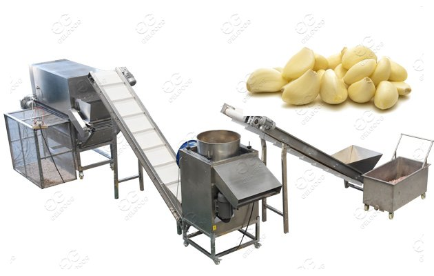 Garlic Separating And Peeling Line
