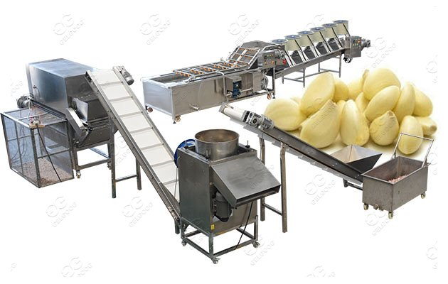 Fully Automatic Garlic Peeling
