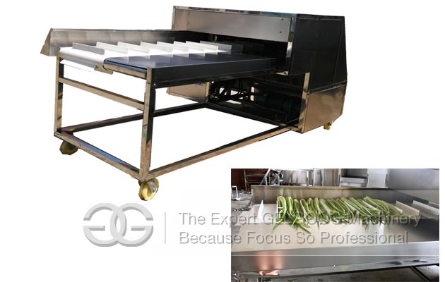 Needle Mushroom Root Cutting Machine