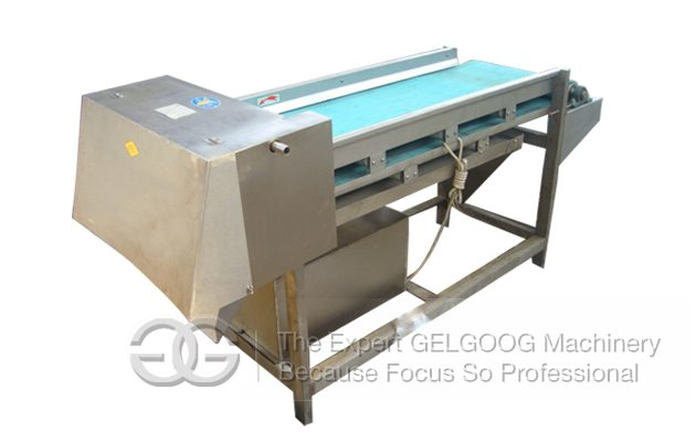 Mushroom Slicing Machine