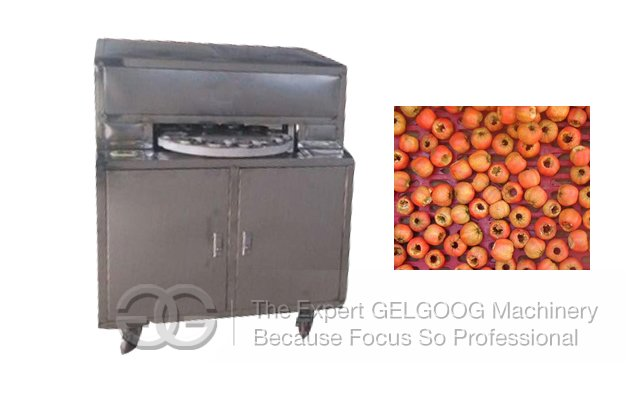 Fruit Seed Pitting Machine