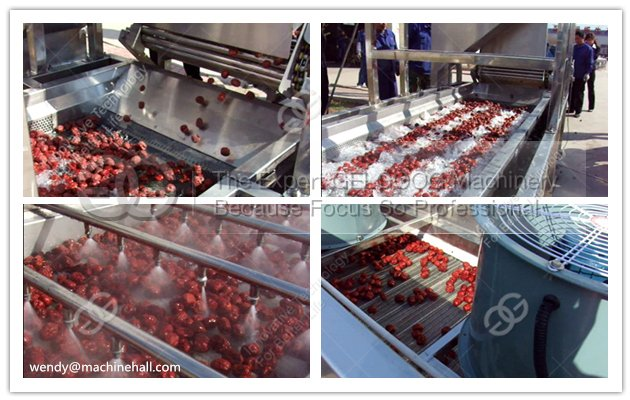 Automatic Date Washing Line|Date Palm Cleaner Line|Jujube Cleaning Line