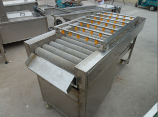 Brush Roller fruit and vegetable Cleaning Machine