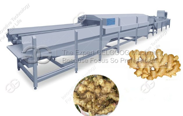 Ginger Washing Line|Ginger Cleaning Line|Ginger Processing Line for Sale