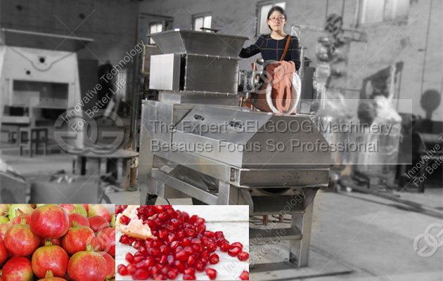 pomegranate peeling machine|pomegranate seed seperate machine|pomegranate juice machine