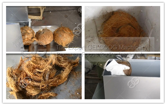 Coconut Brown Skin Removal Machine Coconut Dehusking Machine