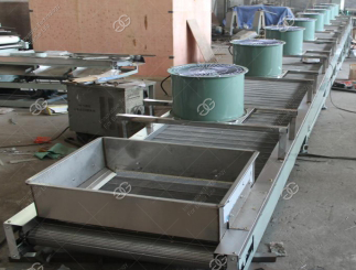 sunflower seeds processing machine|sunflower seeds machine
